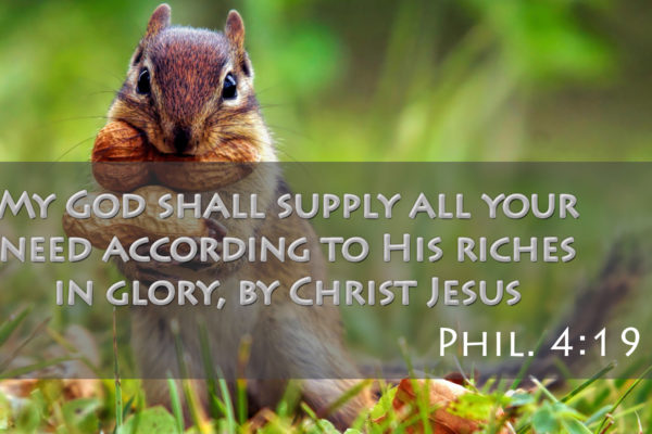 My God shall supply all your need according to His riches in glory, by Christ Jesus